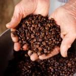 Farmer coffee beans