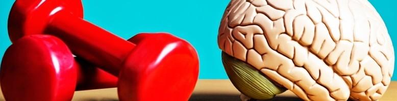 brain excercise (1)